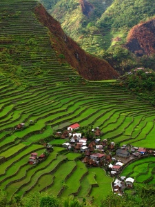 Cordillera rice terraces. Image source: Flickr
